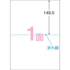 (まとめ)エーワンパソコンで手作りプリントペーパー A4判 2ツ折 1面 白無地 51553 1冊(10シート) 【×10セット】