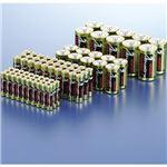 (まとめ)メモレックス・テレックス アルカリ乾電池単4形 LR03/1.5V40S 1パック(40本)【×5セット】