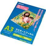 (まとめ)ナカバヤシ ラミネートフィルム A3100μ LPR-A3E2 1パック(100枚)【×2セット】