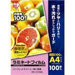 (まとめ)アイリスオーヤマ ラミネートフィルムA4 100μ LFT-A4100 1パック(100枚)【×3セット】