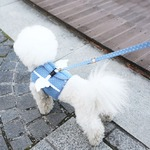 Its Dog(イッツドッグ) マイエンジェルベストハーネス/ドット【XL】