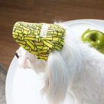 Its Dog(イッツドッグ) ゴーゴーキャップ/ポテト【S】