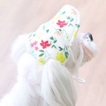 Its Dog(イッツドッグ) ゴーゴーキャップ/ホワイトフラワー【M】