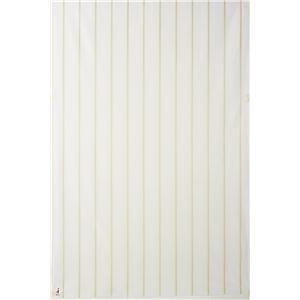 NEXTHOME W1021 Nature ナチュレ ミラーレース ウォッシャブル ホワイト 100×198cm 1枚入 既製カーテン