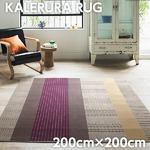 スミノエ ラグマット NEXTHOME KALERURA RUG カレルラ ラグ 200×200cm 正方形 ブラウン