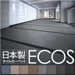 業務用 タイルカーペット 【PX-4205 50cm×50cm 20枚セット】 日本製 防炎 制電効果 スミノエ 『ECOS』