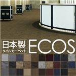 スミノエ タイルカーペット 日本製 業務用 防炎 撥水 防汚 制電 ECOS SG-435 50×50cm 20枚セット BLOCK 【日本製】