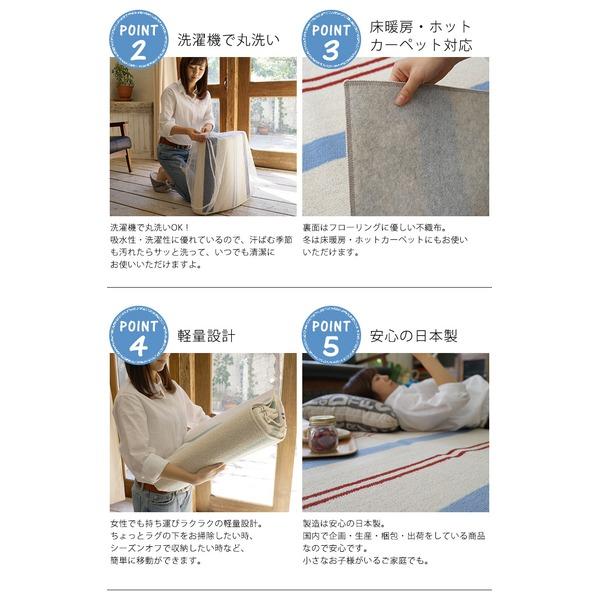 スミノエ ウォッシャブル 綿混 ラグ マリンボーダー 185×240cm ブルー 【日本製】ポイント