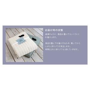 丸洗いできる ネコワッペンキルトラグ キャットキルト 190×240cm ライトブルー