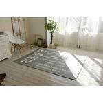 シェニールプリントラグ/絨毯 【185cm×185cm グレー】 正方形 洗える 防滑 ポリエステル 『バスサイン』 〔リビング〕