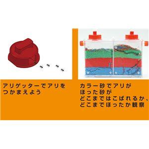(まとめ)アーテック アリさんまるごと観察セット 【×18セット】