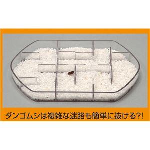 (まとめ)アーテック ダンゴムシのヒミツ観察キット 【×18セット】
