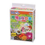 (まとめ)アーテック 植物のなかまカード図鑑 【×5セット】