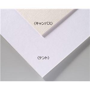 (まとめ)アーテック A&B オリジナル 両面アートボード/イラストボード 【B4】 ECO素材 キャンバス 【×30セット】