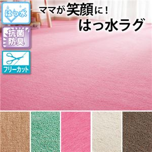 選べる撥水・抗菌・防臭加工カラーカーペット 4: 江戸間4.5畳 ピンクの詳細を見る