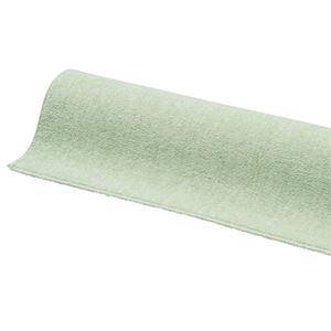 防ダニ・抗菌・防炎カットパイルカーペット 2: 江戸間3畳 グリーンの詳細を見る