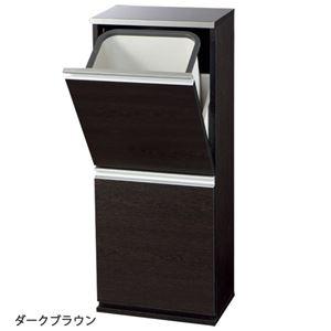 ステンレス薄型(スリム)ダストボックス(ゴミ箱) 【1: 幅37.5cm】 ごみ箱2個付き ダークブラウン