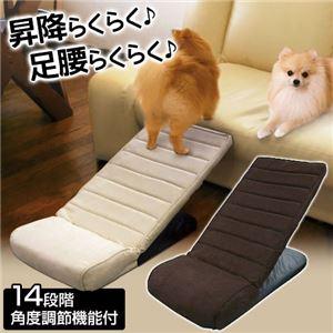 ペットスロープ 【小〜中型犬向】 14段階角度調節機能付き アイボリー 〔ペット用品〕