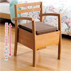 テイコブ アクアポッテ(椅子型ポータブルトイレ) 樹脂製 バケツタイプ 丸洗い/高さ調節可 肘付き