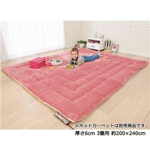 ふっかふかラグマット単品【厚さ3cm2畳用約190×190cm】床暖可サーモンピンク