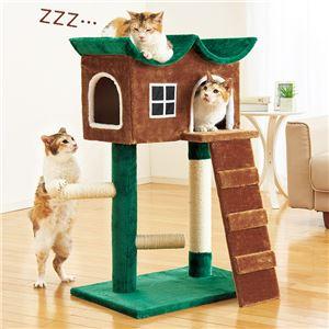 隠れ家風キャットハウス/ペットハウス 【緑の屋根】 幅70cm×奥行57.5cm - 拡大画像