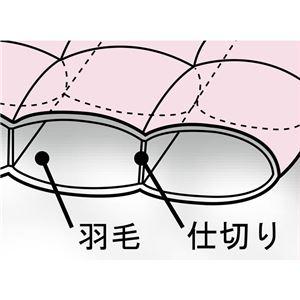 1年中使える2枚合わせ 羽毛掛け布団セット/寝具セット 【セミダブル 4点セット ピンク】 オールシーズン対応