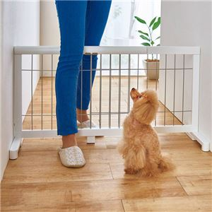 伸縮ペットゲート/ペットゲージ 【レギュラー ホワイト】 幅67~116cm 天然木 〔犬用品 猫用品 ペット用品〕