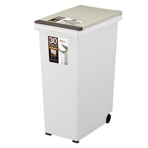 ゴミ箱/ダストボックス 【30L プッシュタイプ】 ふた付き キャスター付き 日本製 『エバンペール』