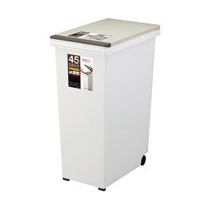ゴミ箱/ダストボックス 【45L プッシュタイプ】 ふた付き キャスター付き 日本製 『エバンペール』