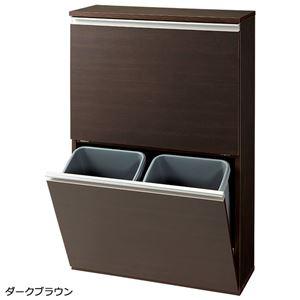 薄型ダストボックス 【幅65cm】 ダークブラウン