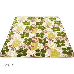 デザインフランネルラグ(ケイプ)(カーペット・絨毯) 【約185×185cm】 グリーン