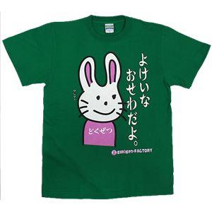 【アホ研究所・アホTシャツ・自虐Tシャツ・おもしろTシャツ】毒舌うさこ よけいなお世話 Sサイズ グリーン - 拡大画像
