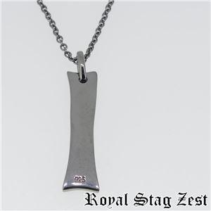 sn25-002 Royal Stag ZEST(ロイヤル・スタッグ・ゼスト) プレートシルバーネックレス メンズ f04
