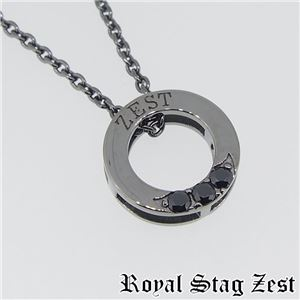 sn25-008 Royal Stag ZEST(ロイヤル・スタッグ・ゼスト) シルバーネックレス メンズ h01