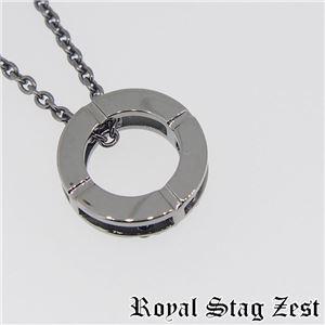 sn25-008 Royal Stag ZEST(ロイヤル・スタッグ・ゼスト) シルバーネックレス メンズ h02