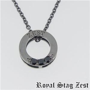 sn25-008 Royal Stag ZEST(ロイヤル・スタッグ・ゼスト) シルバーネックレス メンズ h03