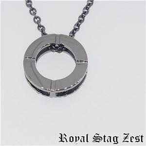 sn25-008 Royal Stag ZEST(ロイヤル・スタッグ・ゼスト) シルバーネックレス メンズ f04