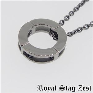 sn25-008 Royal Stag ZEST(ロイヤル・スタッグ・ゼスト) シルバーネックレス メンズ f06
