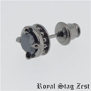 sp25-002 Royal Stag ZEST(ロイヤル・スタッグ・ゼスト) ピアス・イヤーカフ メンズ h02