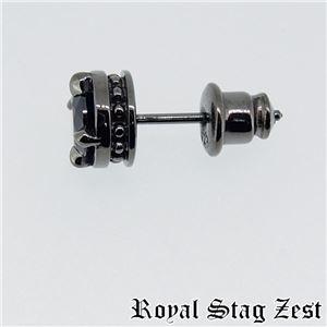 sp25-002 Royal Stag ZEST(ロイヤル・スタッグ・ゼスト) ピアス・イヤーカフ メンズ f05