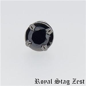 sp25-002 Royal Stag ZEST(ロイヤル・スタッグ・ゼスト) ピアス・イヤーカフ メンズ f06