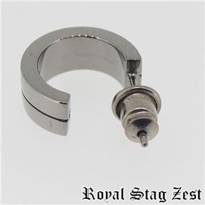 sp25-004 Royal Stag ZEST(ロイヤル・スタッグ・ゼスト) ピアス・イヤーカフ メンズ h01