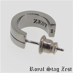 sp25-004 Royal Stag ZEST(ロイヤル・スタッグ・ゼスト) ピアス・イヤーカフ メンズ h02