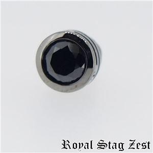 sp25-006 Royal Stag ZEST(ロイヤル・スタッグ・ゼスト) シルバースタッドピアス メンズ f05