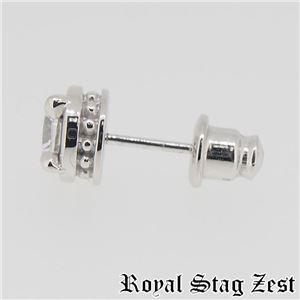 sp25-008 Royal Stag ZEST(ロイヤル・スタッグ・ゼスト) シルバースタッドピアス メンズ h03