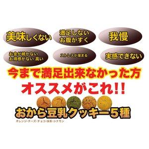 ほろっと柔らか☆ヘルシー&DIET応援☆新感覚満腹おから豆乳ソフトクッキー2kg≪常温商品≫