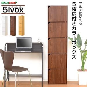A4サイズ収納OK!扉付きカラーボックス【-5ivox-フィボックス】 ダークブラウン