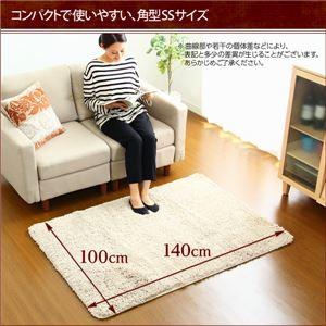 シャギーラグマット/絨毯 【SSサイズ/グリーン】 100cm×140cm 『Caress』 滑り止め付き 洗える 床暖房・ホットカーペット対応 h02