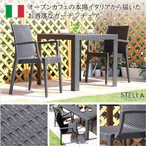 ガーデン肘付チェア 2脚セット【ステラ-STELLA-】(ガーデン カフェ) ブラック