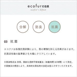 シックハウス対策スプレー 【300mlタイプ/単品】 ホルムアルデヒド分解 『ECOFUR エコファ』